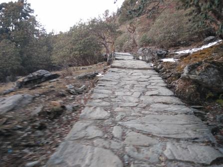 Trail to Chopta